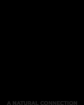 copain-copine-logo